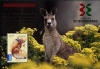 Австралия 2011