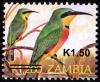 Замбия 2013