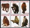 Суринам 2011
