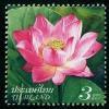 Таиланд 2011