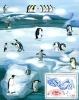 Французские Антарктические Территории  2013