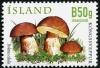 Исландия 2012