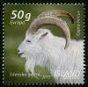 Исландия 2013