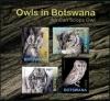 Ботсвана 2020